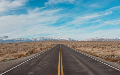 Planning for your business road to recovery